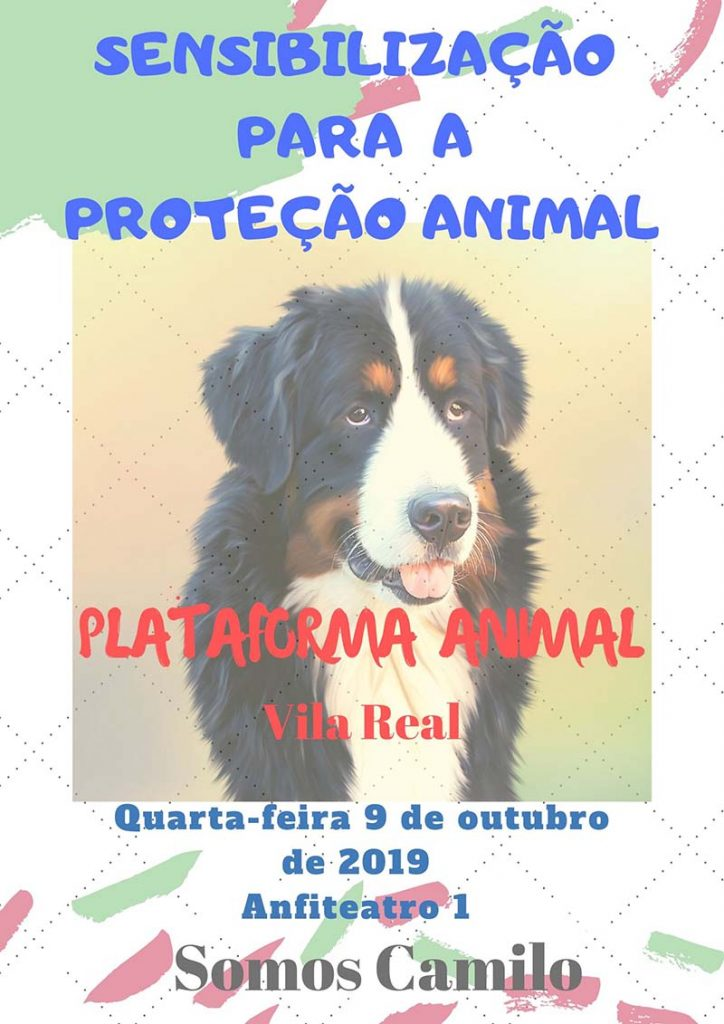 Sensibilização para a Proteção Animal